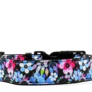 purple and blue dog collar