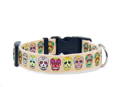 cream skull dog collar