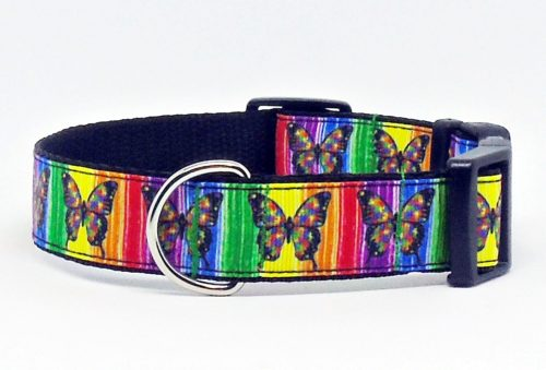 butterfly dog collar