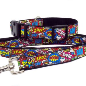 bam pow collar and lead