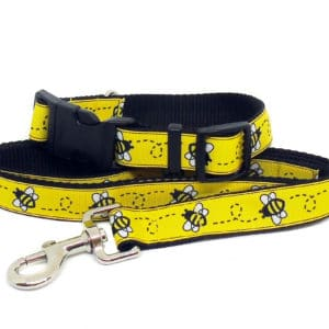 bee collar and lead