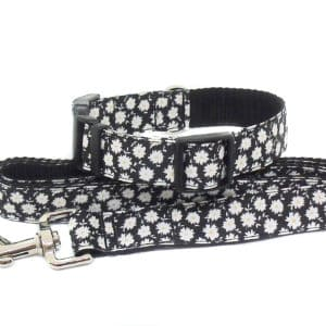 daisy collar and lead