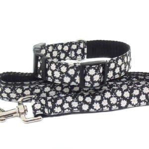 daisy collar and lead