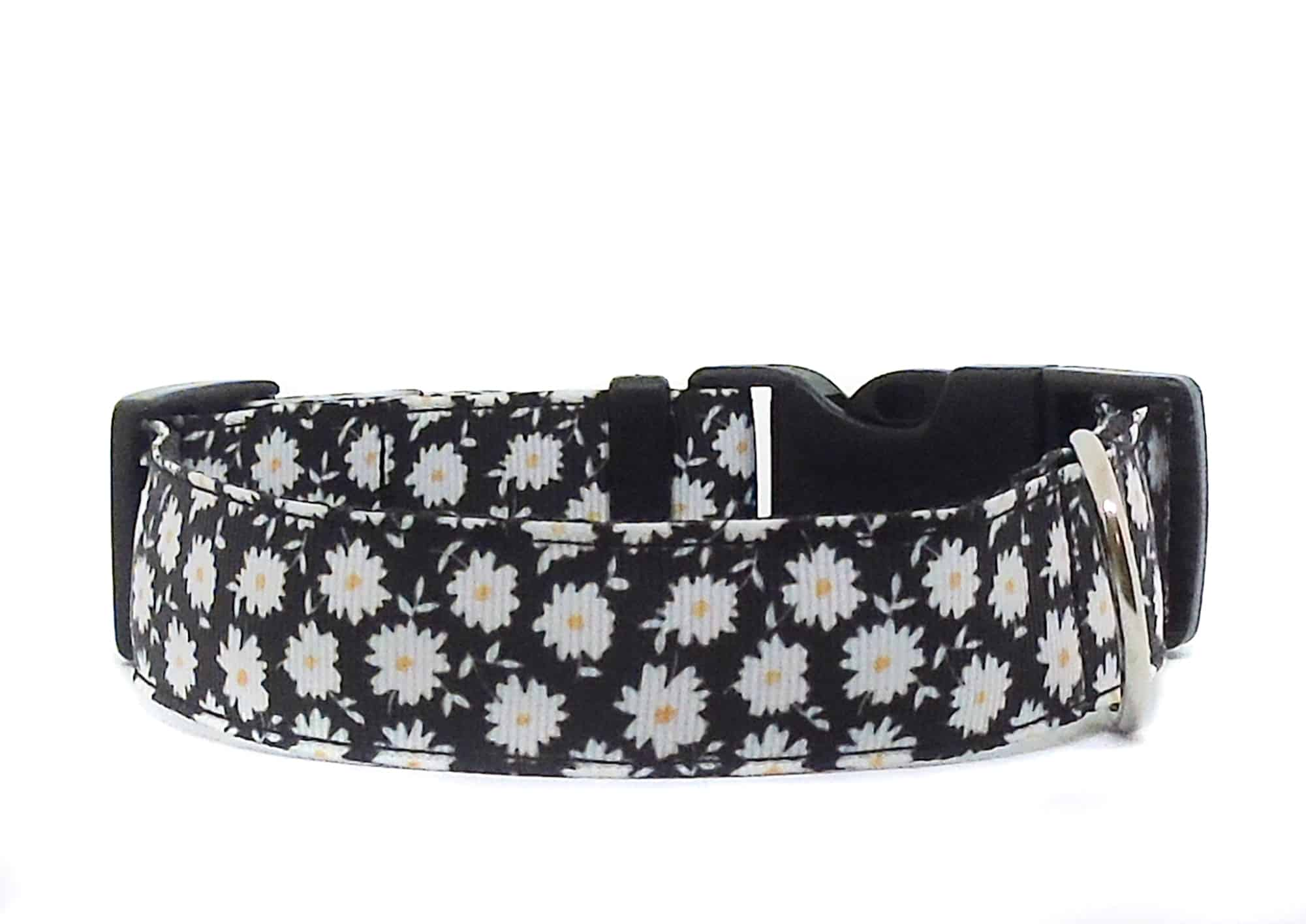 black daisy dog collar