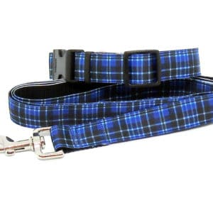 blue tartan collar and lead