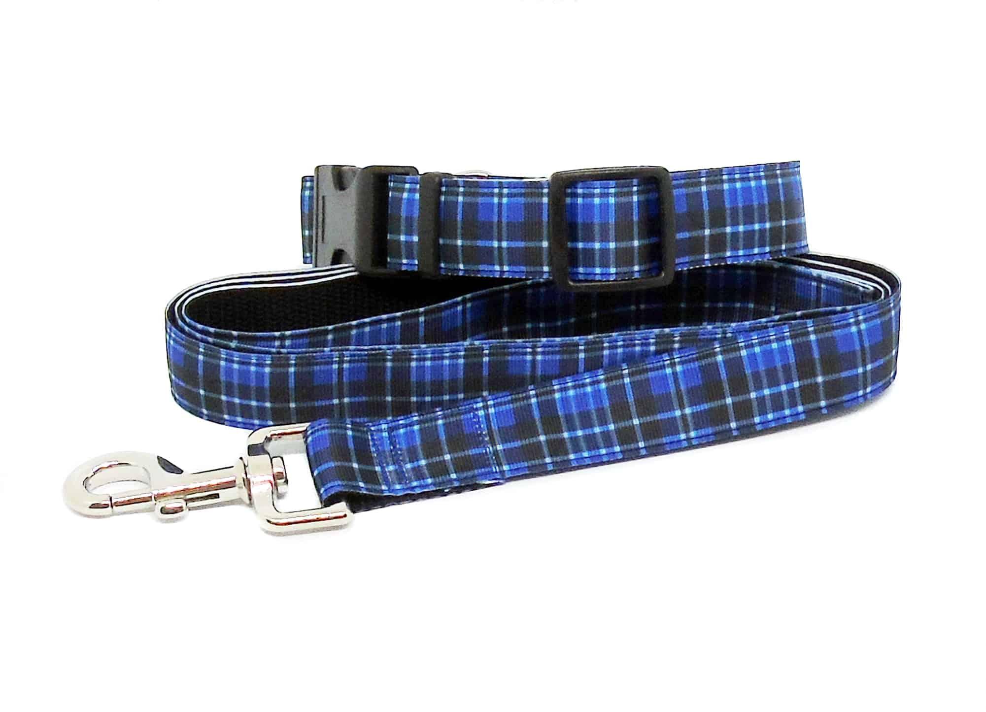 blue tartan collar and lead