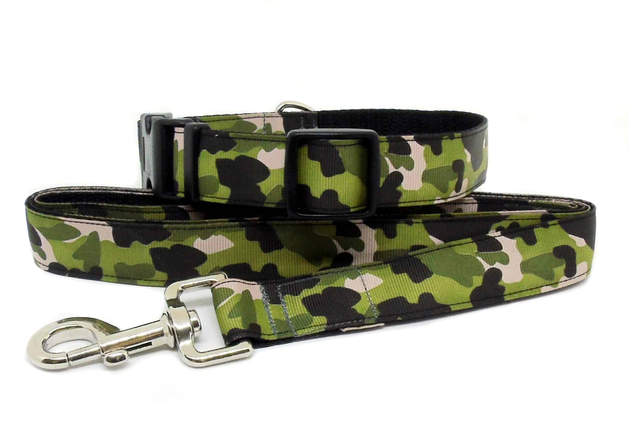 camouflage collar and lead