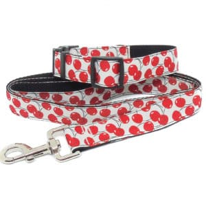 cherries collar and lead