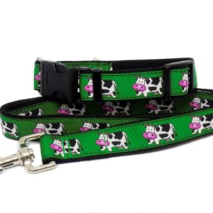 cow collar and lead