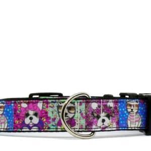 dog print dog collar
