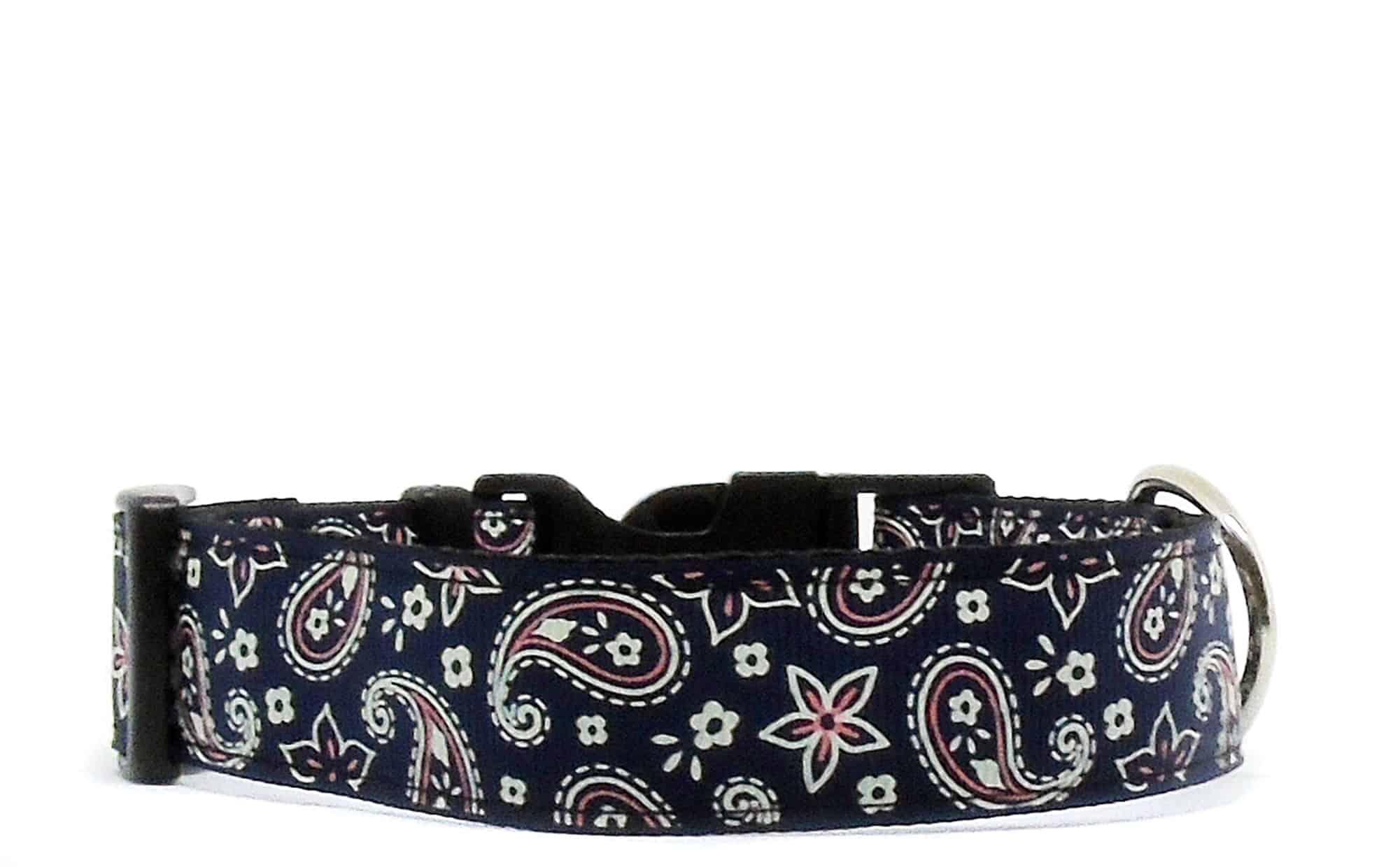 navy paisley dog collar