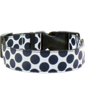 navy polka dot dog collar