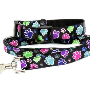 paw print collar and lead