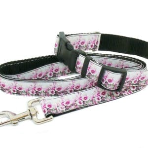 pink and white floral collar and lead