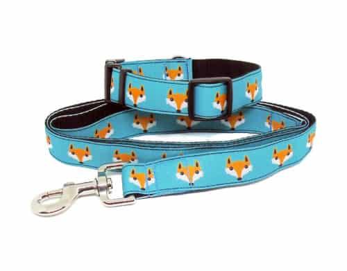 fox print collar and lead set