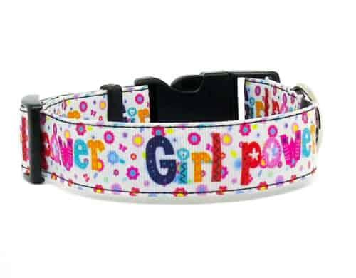 girl power dog collar
