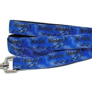 blue mischief dog lead