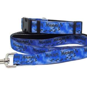 mischief dog collar and lead set