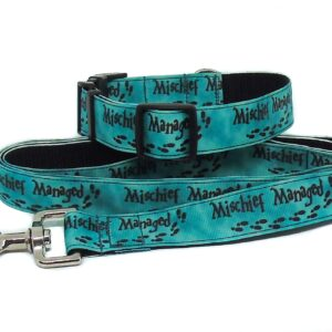 green mischief collar and lead set