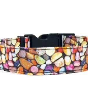 pebbles dog collar