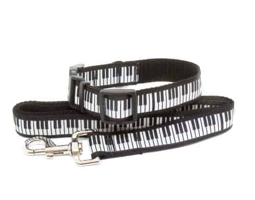 piano collar and lead