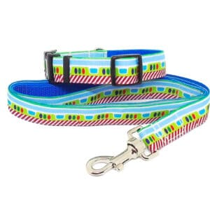 buzz collar and lead