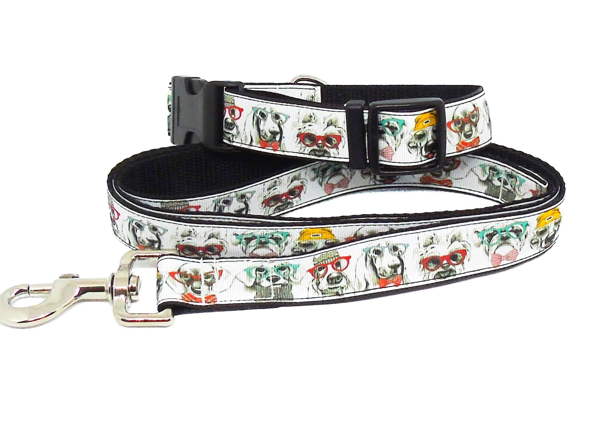 dog print collar and lead