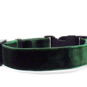 green velvet dog collar