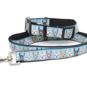 llama print collar and lead set