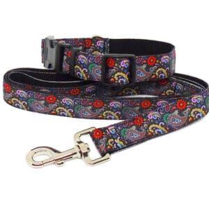 multi paisley collar and lead set