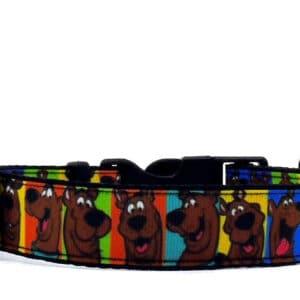 scooby dog collar