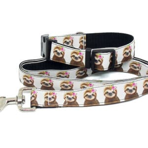 sloth collar and lead