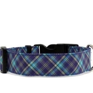 blue and grey tartan dog collar