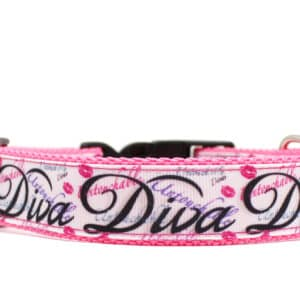 pink diva dog collar