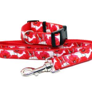 poppy dog collar and lead set