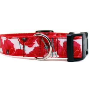 red poppy dog collar